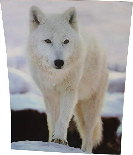 OFA Products White Wolf In Wintry Scene, Wolves 3D Picture, A 3D Lenticular Wolves Wall Art, 40 x 30 cm