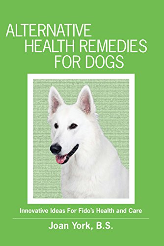 Alternative Health Remedies For Dogs: Innovative Ideas For Fido