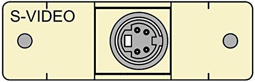 FSR IPS-V311S-LB-IVO Video Connector Insert (Labeled) (Bulkhead S-video)