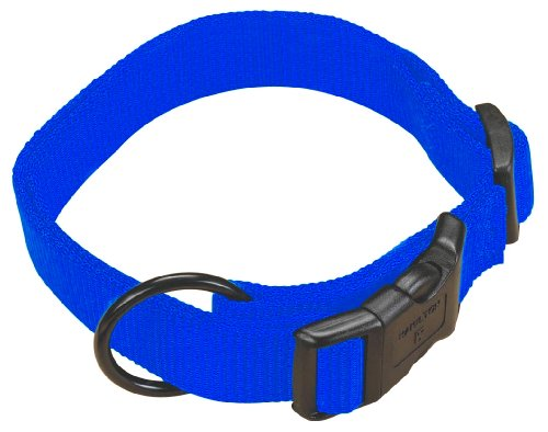 Hamilton 5/8″ Adjustable Dog Collar, adjusts from 12-18 inches, Blue, My Pet Supplies