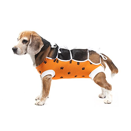 E-Collar Alternative for Cats and Dogs: After Surgey Wear. Recommended by Vets (X-Small, Orange)]()