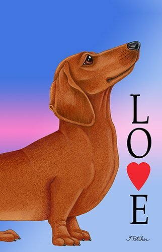 Dachshund Red - Best of Breed Love Design House Flag