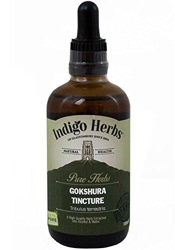 Indigo Herbs - Erd-Burzeldorn Tinktur 100ml