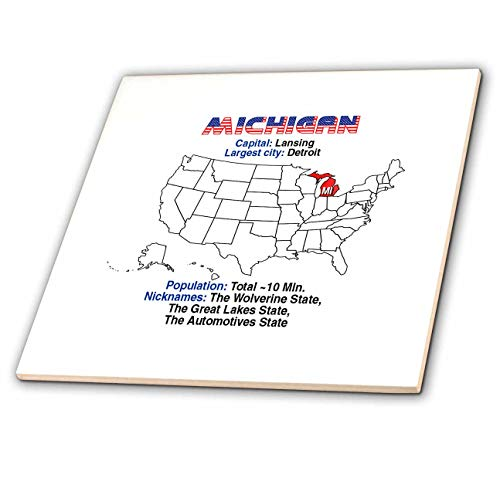 3dRose Alexis Design - American States - Michigan State of The USA, American map, Some Facts, Practical info - 12 Inch Ceramic Tile (ct_307567_4)
