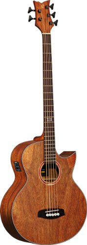 5 String Acoustic Electric Bass - 6