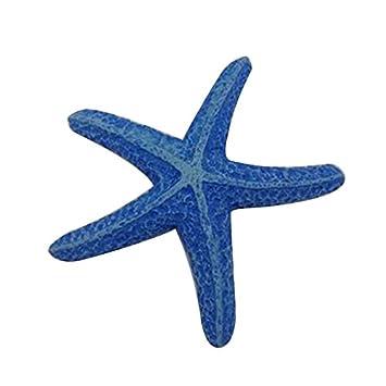 SMARTrich Suministros para acuario en miniatura de resina, diseño de estrella de mar, resina, azul, 9x8x2cm: Amazon.es: Hogar