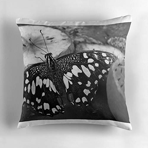 Rdkekxoel Black and White Butterfly Short Plush Soft Decorative Square Throw Pillow Cover Set Cushion Case Cover Pillow Case Cover for Sofa Bedroom Car 18x18 Inch Butterfly White Protector Cover