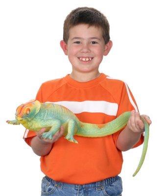 Toysmith TSM8559 Ginormous Grow Lizard