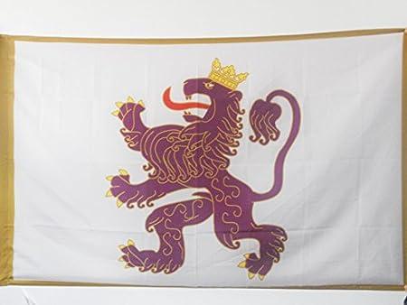 AZ FLAG Bandera del Reino DE LEÓN 910-1230 150x90cm para Palo - Bandera DE Leon 90 x 150 cm: Amazon.es: Hogar