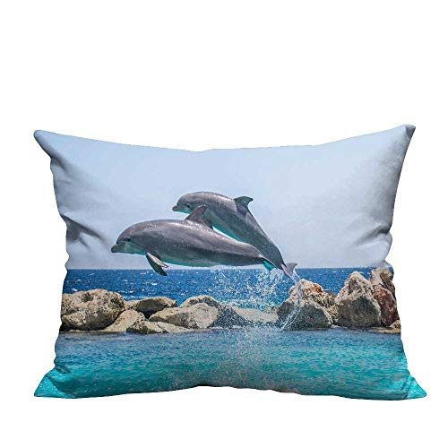YouXianHome Decorative Throw Pillow Case Swimming Contest Ideal Decoration(Double-Sided Printing) 20x35.5 -