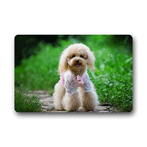 - SPXUBZ Poodle Dog Cute Girl Dress Non Slip Entrance Rug Outdoor/Indoor Durable and Waterproof Machine Washable Door Mat Size:18x30 inch