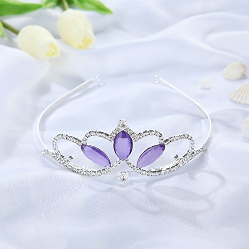 Wxbox Girls Tiara Purple Crystal Crown Silver Plated Best Gifts for Your (Silver Tiaras)