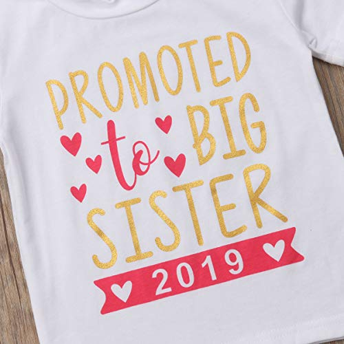 ebae4258d Gaono 2018 Baby Girl Clothes Outfit Big Sister Letter Print T-Shirt Top  Blouse Shirts