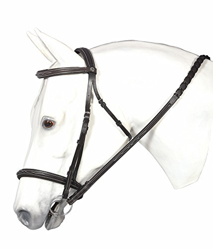 Raised Padded Bridle (HDR Pro Fancy Raised Comfort Crown Padded Bridle H)