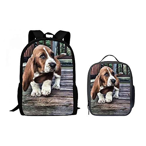 SARA NELL Children Basset Hound Dog School Backpack Set Teens Boys Girls Schoolbag with Lunchbox Lunch Backpack
