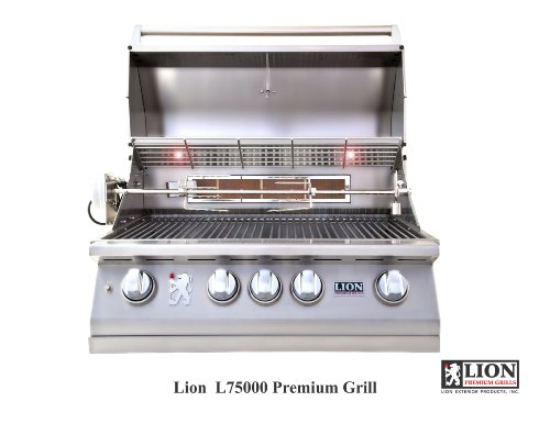Buy barbecue grill 2016