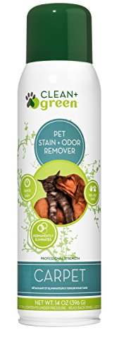 Pet Carpet Cleaner Spray and Odor Eliminator, Unscented, 14 oz. – Eco-Friendly, Stain Remover for Cat or Dog Messes with…