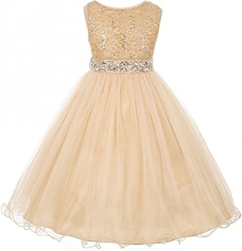 Little Girls Gorgeous Shiny Tulle Beaded Sequin Flowers Girls Dresses (Champagne, 6)