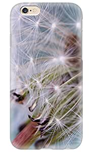Online Designs Dandelion blown off PC Hard new iphone 6 cases for girls designs