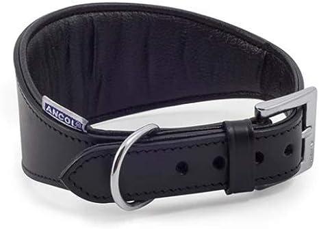 Ancol - Collar Acolchado para Galgo (34-43 cm), Color Negro ...