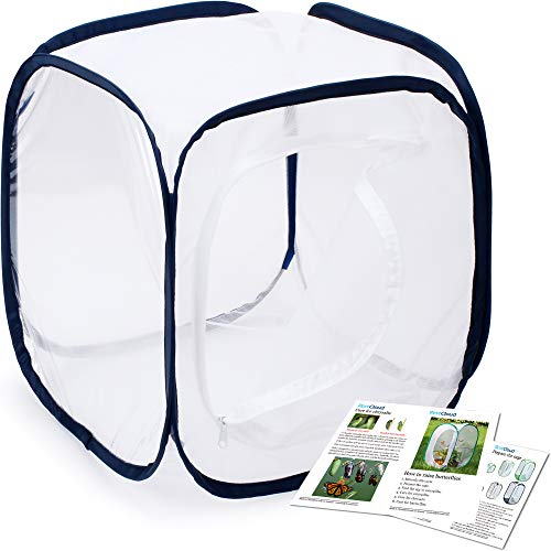 Insect and Butterfly Habitat Cage Terrarium Pop-up 12 X 12 X 12 Inches