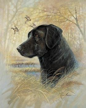 WallsThatSpeak 3-Hunting Bird Dog Posters/Irish Setter English Pointer Black Lab Prints, 8 by 10-Inch, Brown/Blue ()