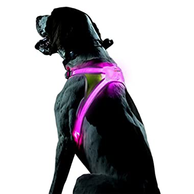 Noxgear LightHound - Multicolor LED Illuminated, Reflective Dog Vest (Large)