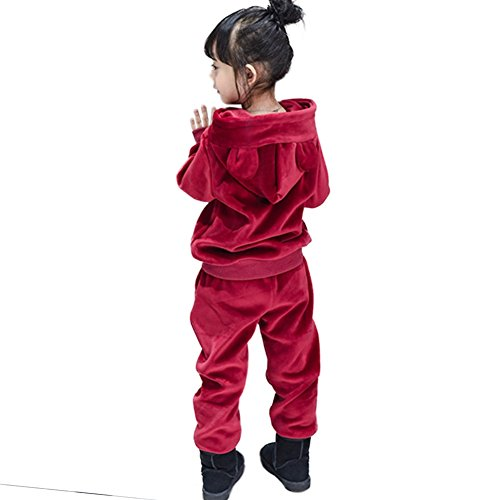 Rexury Unisex Toddler Extra Soft Velour Tracksuit Sweatshirt Hoodie and Pants 2 Piece Set For Boys Girls by Rexury (Image #3)