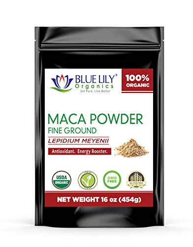 Blue Lily Organics Gelatinized Peruvian Maca Powder(16 oz) - Easy to Digest - Certified Organic Root Extract with Essential Vitamins, Minerals & Antioxidants - Boosts Immunity - Vegan Adaptogen