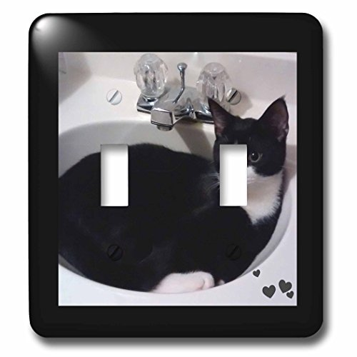 Charlyn Woodruff - CW Designs - Cat Photography - Cute Cat Lovers Black White Tux Cat Curled up in Sink - Light Switch Covers - double toggle switch (lsp_242427_2) by 3dRose