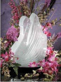 (Reusable Swan Ice Sculpture Mold)
