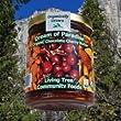 Dream of Paradise - Organic Chocolate Cherry Butter - 8oz