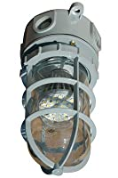 Hazardous Area LED Strobe Light - Chemical/Corrosion Resistant - 10 Watts - Non-Metallic - Class 1(-High Vltg (110-240VAC)-Ceiling-green)