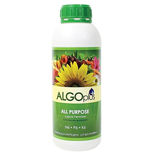 algoflash-all-purpose-formula