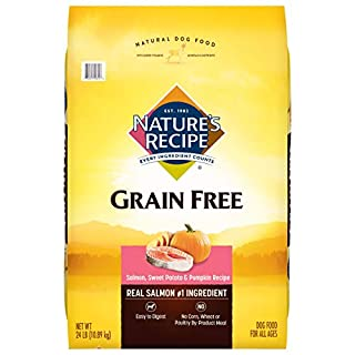 Nature's Recipe Grain Free Dry Dog Food, Salmon, Sweet Potato & Pumpkin Recipe, 24 Pounds, Easy to Digest