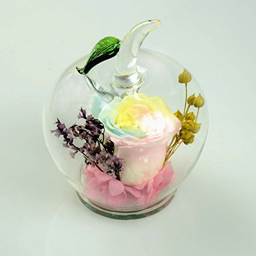 DeFancy Handmade Preserved Flowers Rose Decor with Apple-shaped Glass-Best Gift for Valentine's Day,Mother's Day,Birthday (Multicolor)