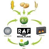 Regal Flame Prime Ventless Bio Ethanol Fireplace