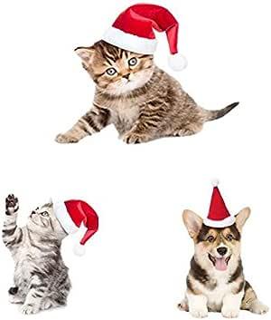 Drove bonitas mascotas perro gato gorro de Papá Noel de