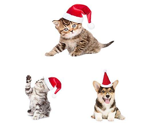 Drove bonitas mascotas perro gato gorro de Papá Noel de Navidad bufanda rojo disfraz Set _ S tamaño