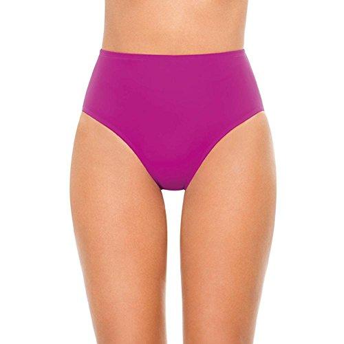 Pink Swimsuit Bottoms (SPANX Core Full Coverage Bottom Swimwear (1365) (14, Berry))