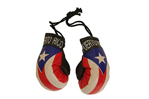 - Puerto Rico Country Flag Mini Boxing Gloves to Hang Over Your Automobile Mirror New