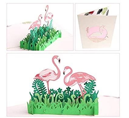 Amazon.com: Tarjeta de felicitación 3D con diseño de ...