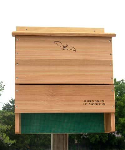 Songbird Essentials SE570 Five Chamber OBC Bat House (Set of 1) ()