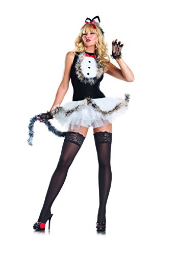 Catwoman Costume Naughty (Adult Women's 4 Piece Sexy Kitten Dress Halloween Party)