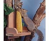 Songbird Essentials Squirrel Platform Feeder