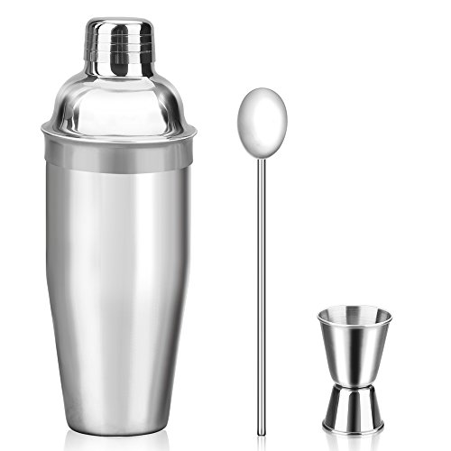 Stainless Cocktail Martini Shaker - 24 oz Cocktail Shaker Set - Drink Shaker - Bartender Kit - Stainless Steel Martini Shaker with Double Jigger and Stainless Steel Straw