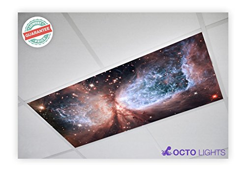 Octo Lights - Fluorescent Light Covers - 2x4 Flexible Decorative Light Diffuser Panels - Astronomy - for Classrooms and Offices - Astronomy 008