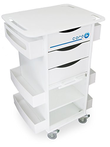 Locking Medical Cart - TrippNT 51422 Polyethylene/ABS Core DX Lab Cart with Extra Shelf in Bulk Area, Clear PETG Hinged Door, 23