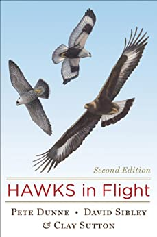 Hawks in Flight: Second Edition by [Dunne, Pete, Sutton, Clay, Sibley, David]