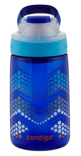 Contigo AUTOSEAL Gizmo Sip Kids Water Bottle, 14 oz, Sapphire Bubble Chevron (Best No Leak Water Bottle)